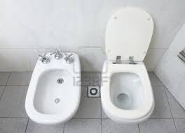 Bidet and Commode